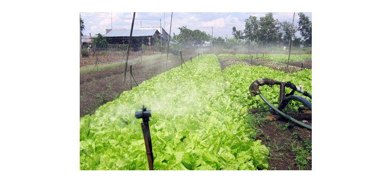 Địa chỉ cung cấp biến tần cho máy bơm nước tưới nông nghiệp tại Bạc Liêu